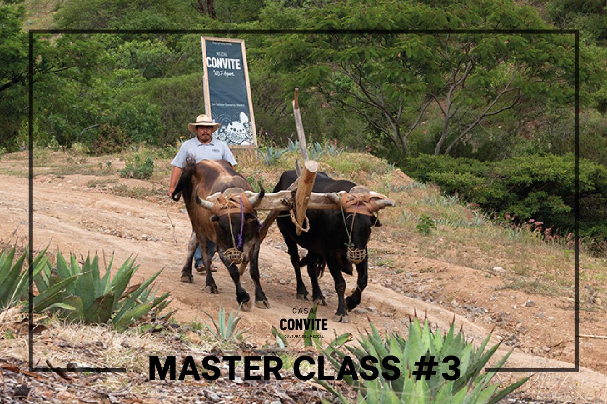 Master Class #3